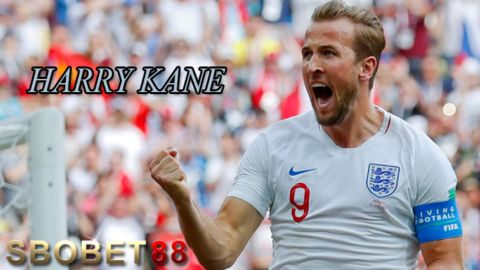 Pertajam Fokus, Harry Kane Puasa Media Sosial